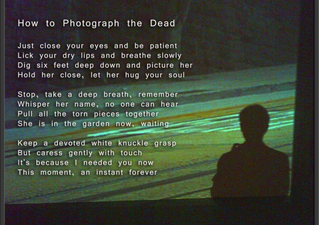 how-to-photograph-the-dead-comic-book-poem